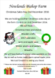 christmas-sales-day-16